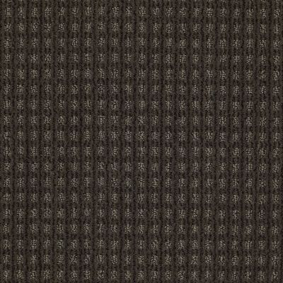 Anderson Tuftex American Home Fashions Living Large Smoked Pearl 00559_ZA884