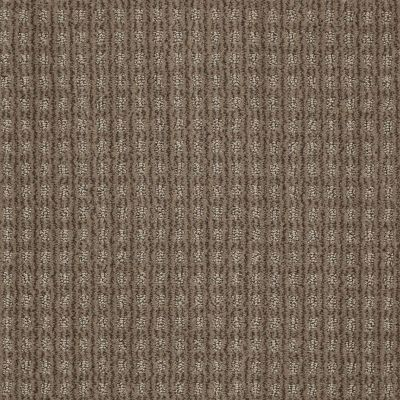 Anderson Tuftex American Home Fashions Living Large Simply Taupe 00572_ZA884