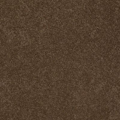 Anderson Tuftex American Home Fashions Ziggy Derby Brown 00703_ZA945