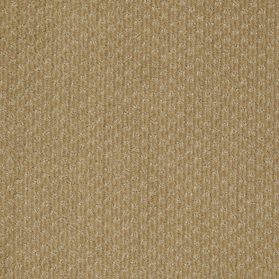 Anderson Tuftex American Home Fashions Sassy Burnished 00231_ZA947