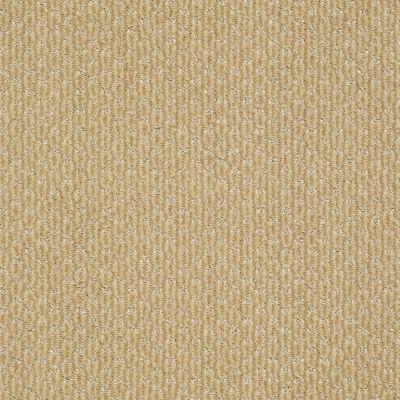 Anderson Tuftex American Home Fashions Sassy Golden Spike 00233_ZA947