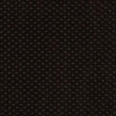 Anderson Tuftex American Home Fashions Sassy Espresso 00724_ZA947