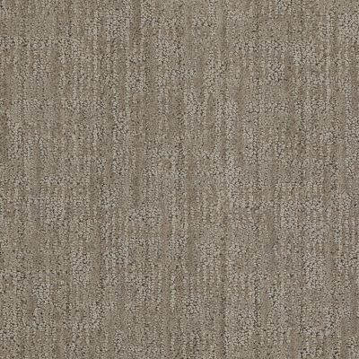 Anderson Tuftex Builder Crowd Delight II Demure Taupe 00573_ZB775