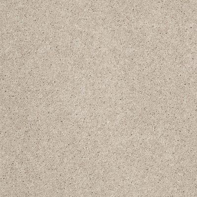 Anderson Tuftex Builder Sheer Genius II Cement 00512_ZB942