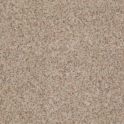 Anderson Tuftex American Home Fashions Our Place I Terrazzo 0213B_ZJ003