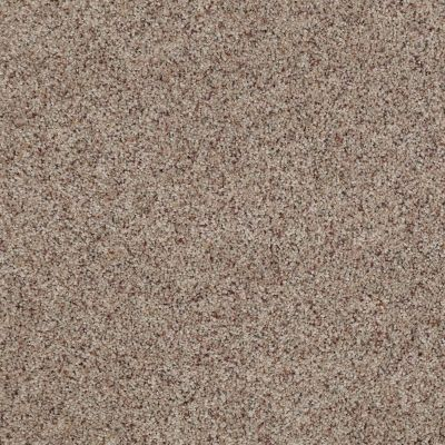 Anderson Tuftex American Home Fashions Our Place I Morning Blend 0214B_ZJ003