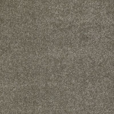 Anderson Tuftex American Home Fashions Our Place II River Rock 00533_ZJ005
