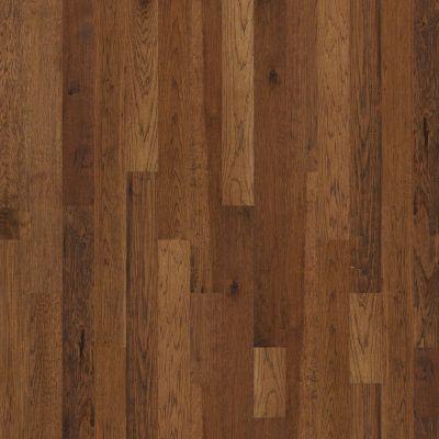 Shaw Floors Shaw Hardwoods Dakota Trail 00229_ZK063