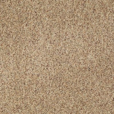 Anderson Tuftex AHF Builder Select Papermate I Berber Raw Silk 0172B_ZL813