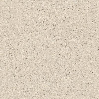 Anderson Tuftex Free Form Salt Box 00102_ZZ001