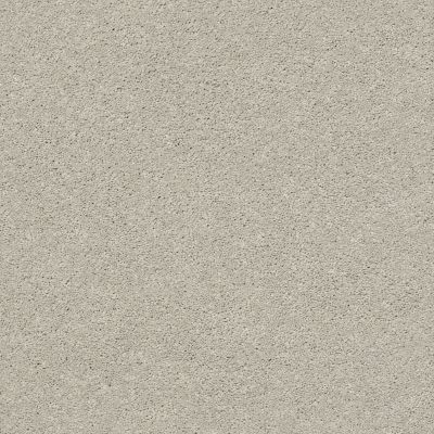 Anderson Tuftex Free Form Gentle Gray 00541_ZZ001