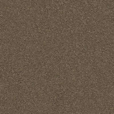 Anderson Tuftex Free Form Dash 00556_ZZ001