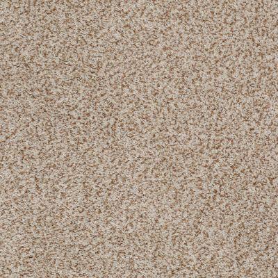 Anderson Tuftex Palladio II Wheat 00212_ZZ002