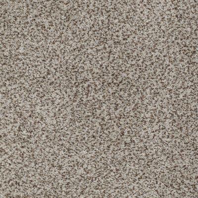Anderson Tuftex Palladio II Wood Opal 00571_ZZ002