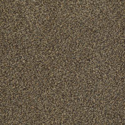 Anderson Tuftex Palladio II Taupe 00728_ZZ002