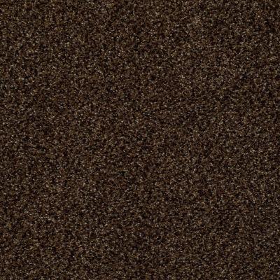 Anderson Tuftex Venecia II Granite 00778_ZZ004