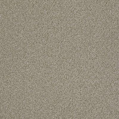 Anderson Tuftex On Point Taupestone 00754_ZZ012