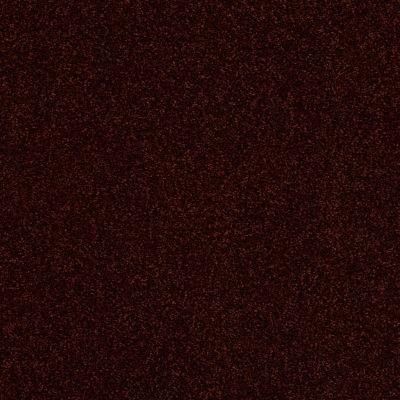 Anderson Tuftex Hudson Falls Merlot 00678_ZZ014