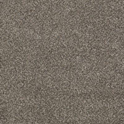 Anderson Tuftex Oliver's Twist Slippery Rock 00122_ZZ015