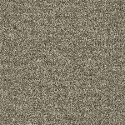 Anderson Tuftex Atria Evergreen Fog 00333_ZZ029