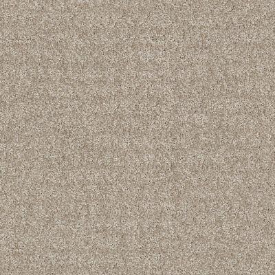 Anderson Tuftex Atria Soft Greige 00512_ZZ029