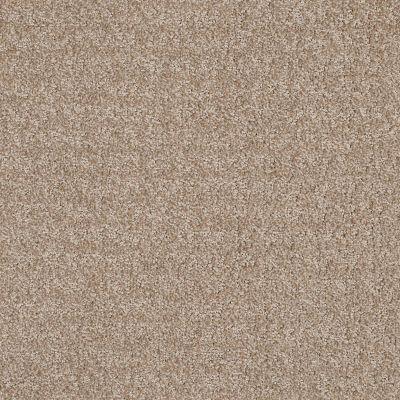 Anderson Tuftex Atria Brushed Tan 00723_ZZ029