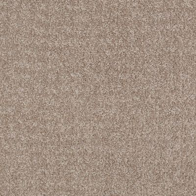 Anderson Tuftex Atria Soapstone 00762_ZZ029