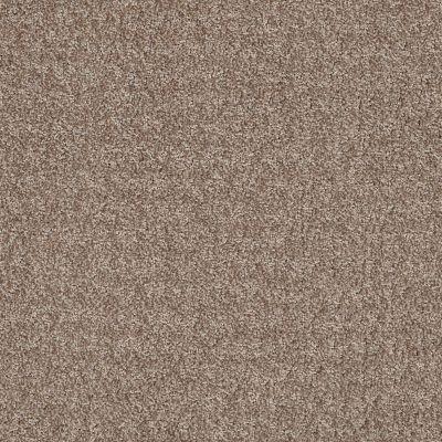 Anderson Tuftex Atria Sedona Sand 00765_ZZ029