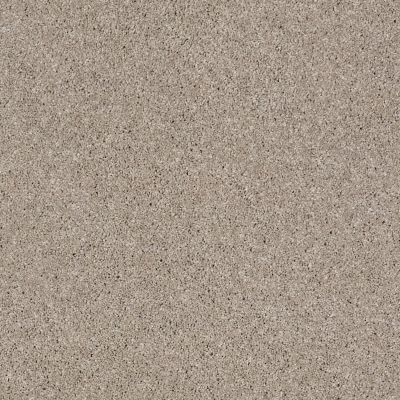 Anderson Tuftex Glide Driftwood 00151_ZZ033