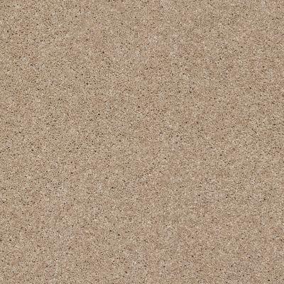 Anderson Tuftex Glide Cookie Dough 00220_ZZ033
