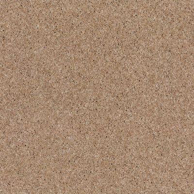 Anderson Tuftex Glide Copper Dust 00664_ZZ033