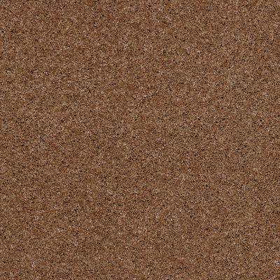 Anderson Tuftex Glide Bronzed Peach 00667_ZZ033
