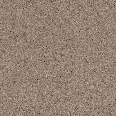 Anderson Tuftex Glide Biscuit 00761_ZZ033