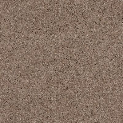 Anderson Tuftex Glide Utterly Beige 00763_ZZ033