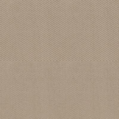 Anderson Tuftex Classics Cathedral Hill II Grecian Stone 00152_ZZ040
