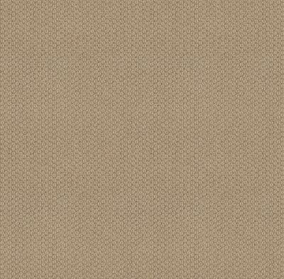 Anderson Tuftex Classics Cathedral Hill II Antique Linen 00225_ZZ040