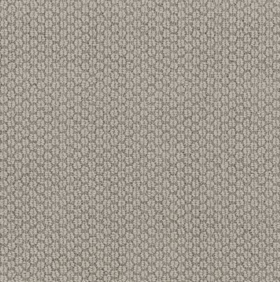 Anderson Tuftex Classics Cathedral Hill II Stylish Gray 00552_ZZ040