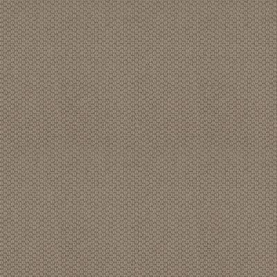Anderson Tuftex Cathedral Hill II Taupe Tone 00574_ZZ040