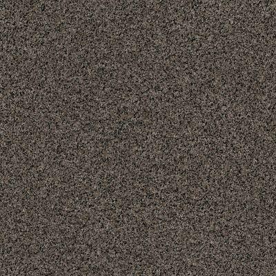 Anderson Tuftex Shimmy Porpoise 00556_ZZ041