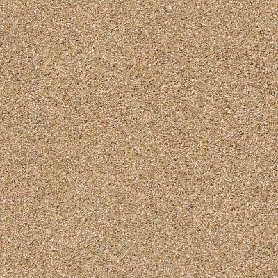 Anderson Tuftex Ocean View Farro 00237_ZZ043