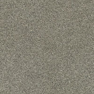 Anderson Tuftex Ocean View City Gray 00558_ZZ043