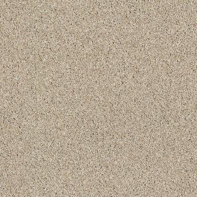 Anderson Tuftex Classics Ocean View Clay 00732_ZZ043