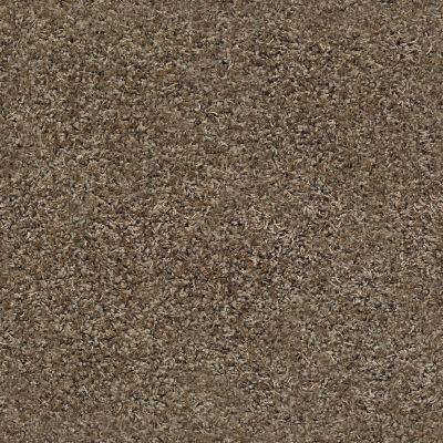 Anderson Tuftex Serenade Sleek Suede 00757_ZZ057
