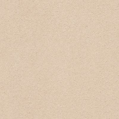 Anderson Tuftex Second Glance Delicate Tan 00163_ZZ058