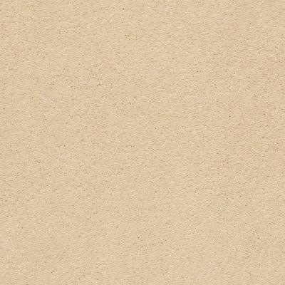 Anderson Tuftex Second Glance Golden 00224_ZZ058