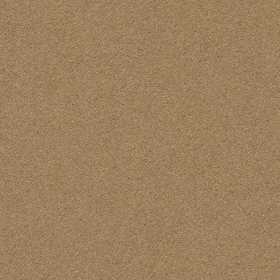 Anderson Tuftex Second Glance Barley 00227_ZZ058