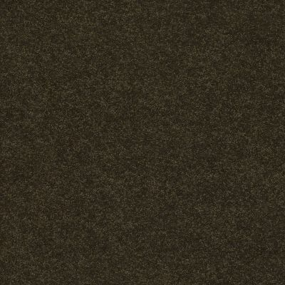 Anderson Tuftex Second Glance Fir 00339_ZZ058