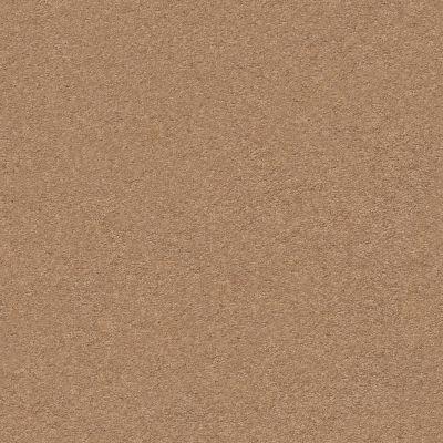 Anderson Tuftex Second Glance Desert View 00665_ZZ058