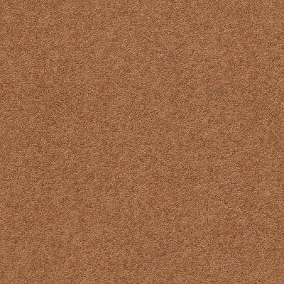 Anderson Tuftex Second Glance Pumpkin Spice 00668_ZZ058