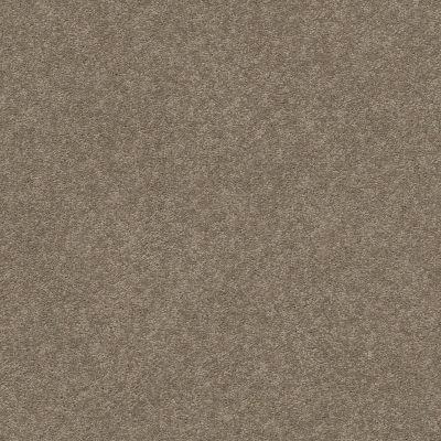 Anderson Tuftex Second Glance Sleek Suede 00757_ZZ058